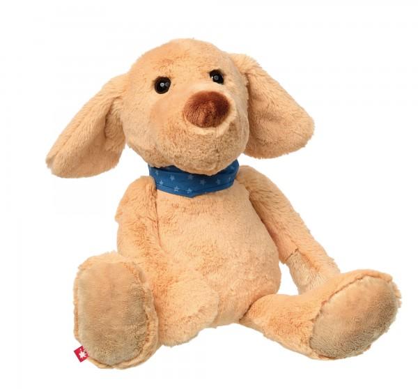 Hund Glen Glattstett groß