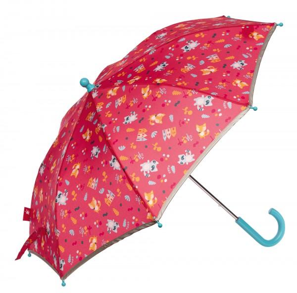 Regensch. Waschbär COLORI